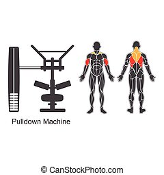 Gym pulldown machine