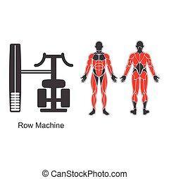 Gym row machine