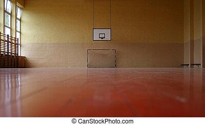 Gymnasium - goal and basket.