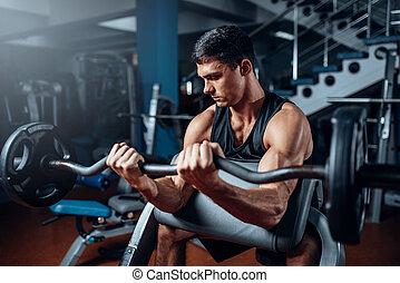 gymnase, homme, bronzé, exercice, barre disques