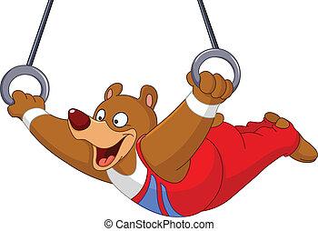 Gymnast bear - Male gymnast bear with rings