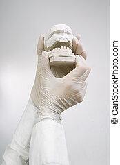gypse, coulage, modèles, dentaire, -, /, concept, tenant mains
