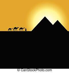 gypt pyramids with camel caravan on sunset illustration