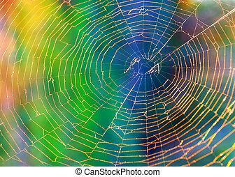 háló, pók, háttér, (cobweb)