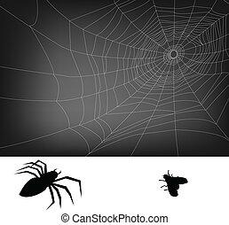 háló, pók