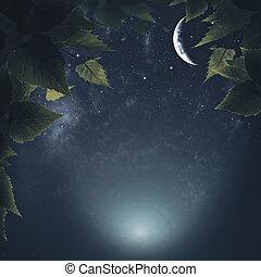 háttér, elvont, természetes, erdő, éjszaka