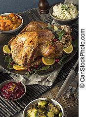 házi készítésű, hálaadás pulyka, vacsora