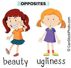 häßlichkeit, wörter, gegenüber, schoenheit