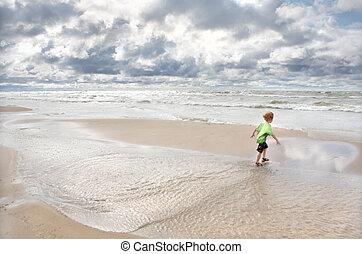 häftig, strand, dag