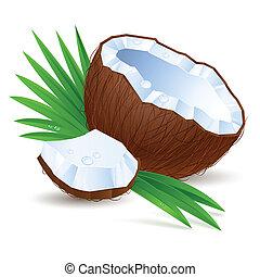 hälfte, a, kokosnuss