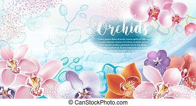 hälsningskort, med, orkidéer, blomningen