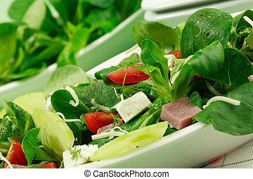 hälsosam, fält, salad-, mat