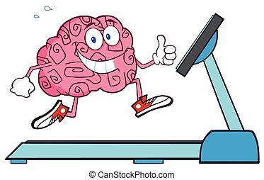 hälsosam, hjärna, spring, treadmil