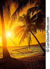 hängmatta, silhuett, med, palmträdar, på, a, vacker, hos, solnedgång
