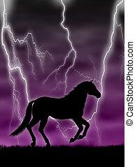 häst, in, den, oväder