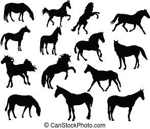 häst, silhouettes