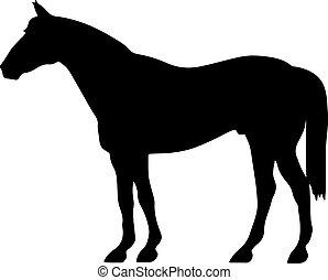 häst, silhuett, skissera, -, uppe, fostra, vektor, svart, ...