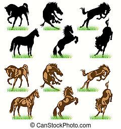 hästar, silhouettes, sätta