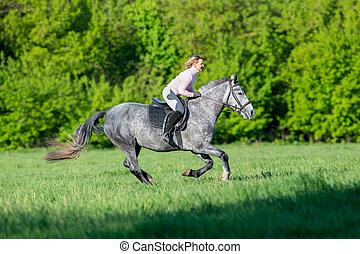 hästryggen, riding., kvinna, ridande, a, häst, in, sommartid, outdoors., mänsklig, på, häst, kör, fasta, in, field.