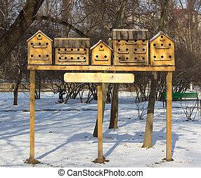 häusser, park, vogel