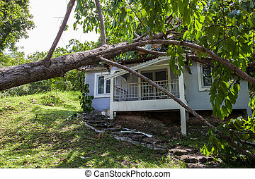 hårt, hus, efter, träd, skadegörelse, oväder, stjärnfall