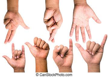 hænder
