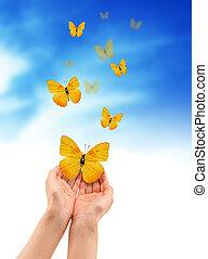 hænder, hos, sommerfugle