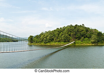 hængende, bro, ind, den, skov