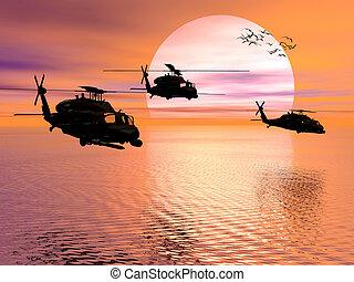 hélicoptère armée, blackhawk