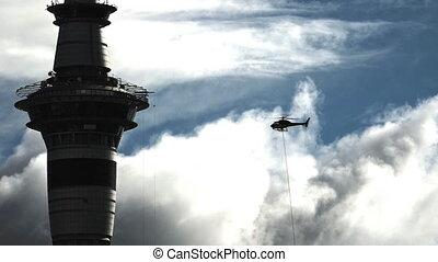 hélicoptère, silhouette, mouche