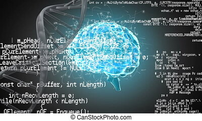 hélix, humain, interface, codes, cerveau, adn