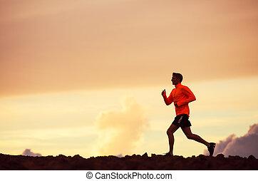 hím, futó, árnykép, futás, bele, napnyugta