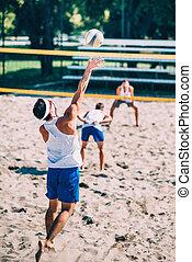 hím, tengerpart röplabda, játékosok, action