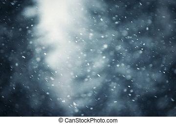 hóesés, erdő