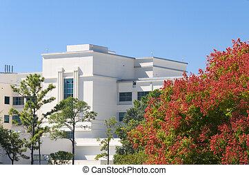 hôpital, automne