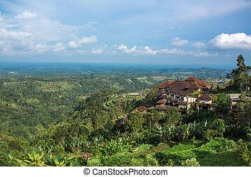 hôtel, vert, vue, jungle, énorme, paysage, complexe, colline