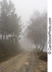 hög, alpin väg, in, a, dimmig, morgon