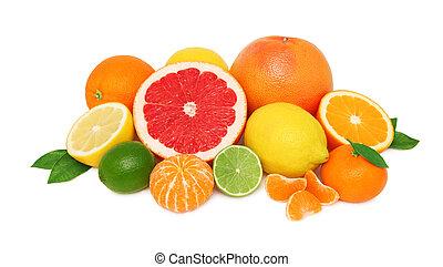 hög, från, olik, citrusträd frukt, vita, bakgrund
