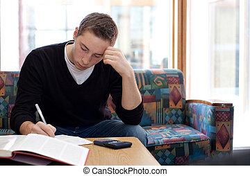 högskola, grabb, studera, gör, hemarbete
