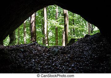 höhle, wald