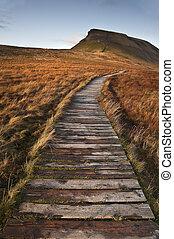hölzern, fußweg, aus, sumpfland, führen, zu, pen-y-ghent, in, yorkshire täler nationalpark