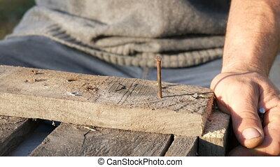 hölzern, zimmermann, nagel, eisen, hämmer, mann, planke