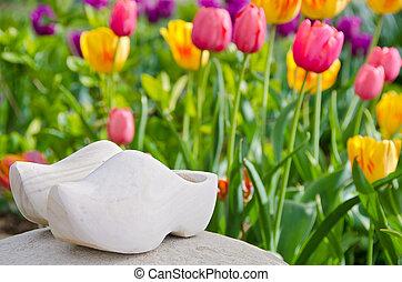 hölzerne schuhe, in, tulpenblüte, kleingarten