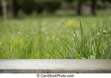 hölzerner fußboden, mit, verwischt, bäume, von, natur, park,...
