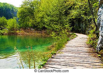 hölzerner pfad, bei, a, waldsee, in, plitvice, seen, nationalpark, kroatien