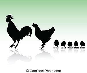 höna, silhouettes, familj