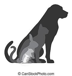hörcsög, egér, kutya, üregi nyúl, macska