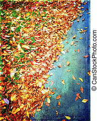 höst, bladen, färgrik, bakgrund