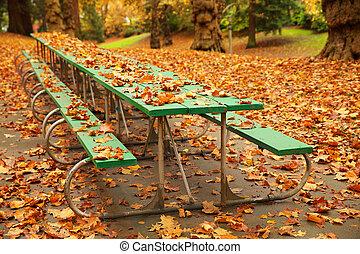 höst, bord, picknicken, länge
