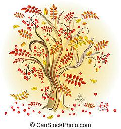 höst, färgrik, träd